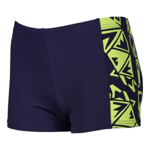 Arena Boys Fenrir Swim Shorts - Blue