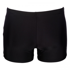 Arena Urban Black / Blue Swim Shorts
