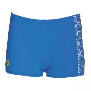 Arena Shed Boys Bright Blue Swim Shorts