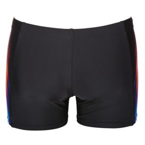 Arena Shining Shorts Black