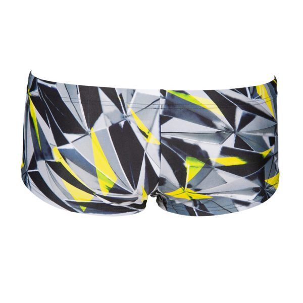 Arena ONE Shattered Low Waist Shorts